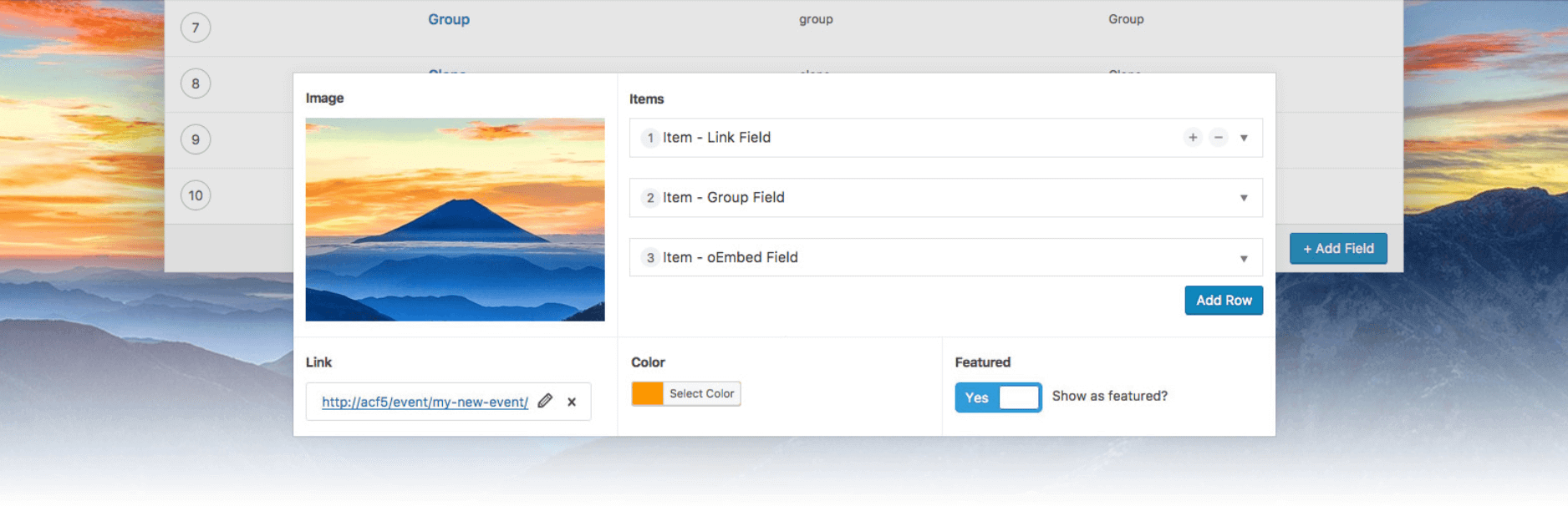 Advanced Custom Fields wp plugin