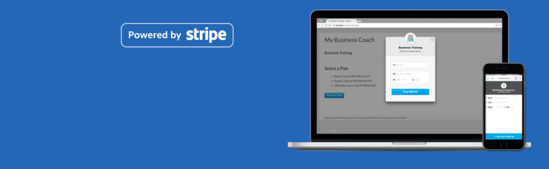 Stripe Payments for WordPress